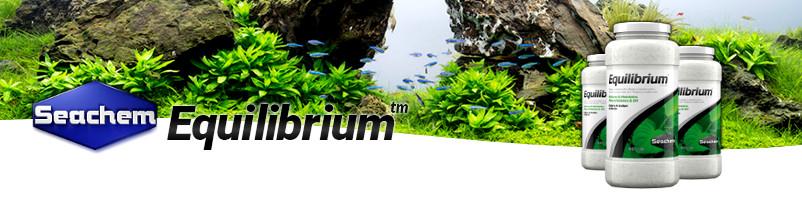1211-equilibrium